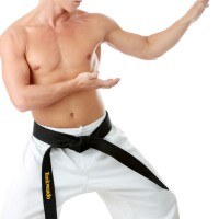 martial arts retention ideas